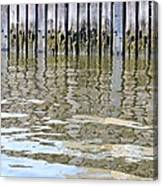 Reflection Of Fence  Canvas Print