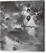 Reflection Of Raindrops In A Puddle Canvas Print