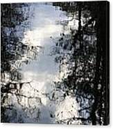 Reflection On Sweet Water Strand Canvas Print