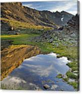 Reflections At The Mountain Lake Canvas Print