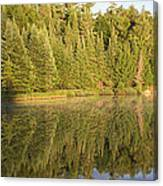 Reflections - Canisbay Lake - Detail Canvas Print