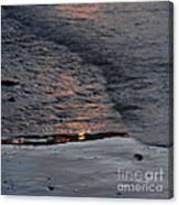 Reflections IIi  Canvas Print