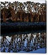 Reflections In First Light Canvas Print