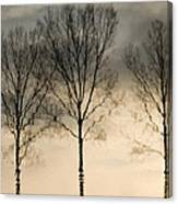 Reflections In Grey II Canvas Print