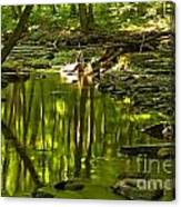 Reflections In Hells Hollow Creek Canvas Print