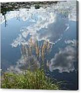 Reflections in the Water Canvas Print