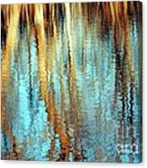 Reflections In Water Canvas Print