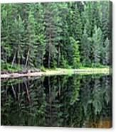 Reflections In Wtare Canvas Print