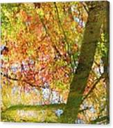 Reflections Of A Colorful Fall 001 Canvas Print