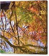 Reflections Of A Colorful Fall 002 Canvas Print
