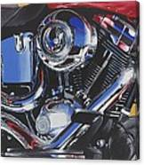 Reflections Of A Fat Boy Canvas Print