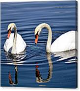 Reflections Of Elegance Canvas Print