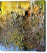 Reflections Of Fall1 Canvas Print