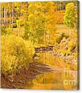 Reflections Of Gold Canvas Print