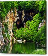 Reflections Of Mine Canvas Print
