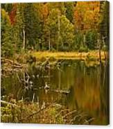 Reflections Of The Fall Canvas Print