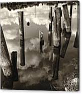 Reflections On The Bayou Villere La  Dsc05423 Canvas Print