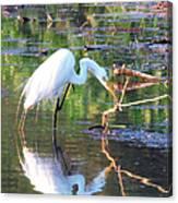 Reflections On Wildwood Lake Canvas Print