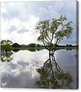 Reflective Flood Waters Canvas Print