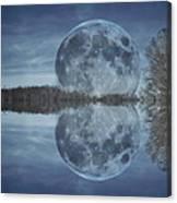 Reflective Paradise Canvas Print