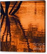 Reflectivity Canvas Print