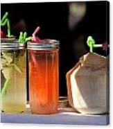 Refreshing Drinks Canvas Print