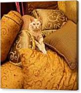Regal Feline Canvas Print