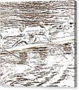 Regatta-2-10jpg Canvas Print