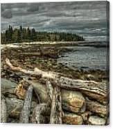 Reid Beach Canvas Print