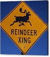 Reindeer Xing Canvas Print