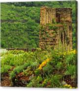 Reinfels Castle Ruins And Wildflowers In The Rhine River Valley 1 Canvas Print