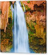 Relaxing Falls Canvas Print