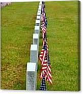 Remembering Veteran's Day Canvas Print