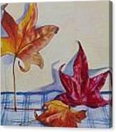 Remnants Of Autumn Canvas Print