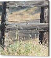 Remote Fence Canvas Print