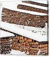 Renewable Heat Source Firewood Stacked In Winter Canvas Print