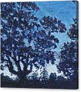 Rensing Tree Canvas Print
