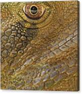 Reptile Skin Pattern Canvas Print