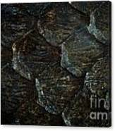 Reptile Skin Texture Canvas Print
