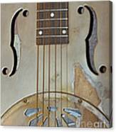 Resonator Detail Canvas Print