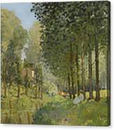 Rest Along The Stream Canvas Print