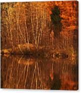 Restes D'automne Canvas Print