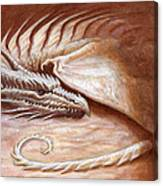 Restful Wyrm Canvas Print