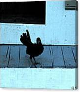 Resting On The Porch  Canvas Print