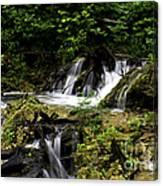 Restless Water Canvas Print