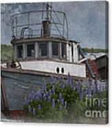 Retired Boat Canvas Print