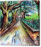 Retorno  Canvas Print