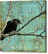 Retro Blue - Crow Canvas Print