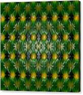 Pattern Plastic Canvas Print