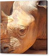 Rhino Naptime Canvas Print